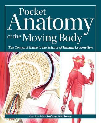 Pocket Anatomy of th...