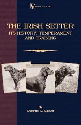 The Irish Setter
