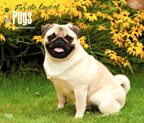 For the Love of Pugs...