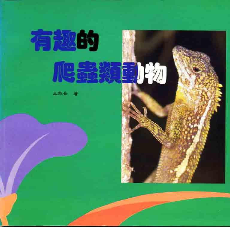 有趣的爬蟲類動物