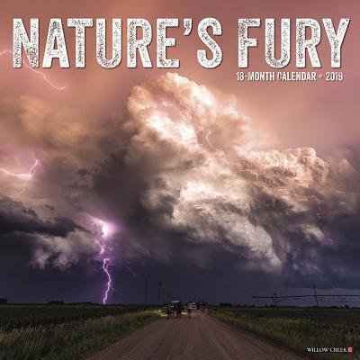 Nature's Fury 2019 Calendar