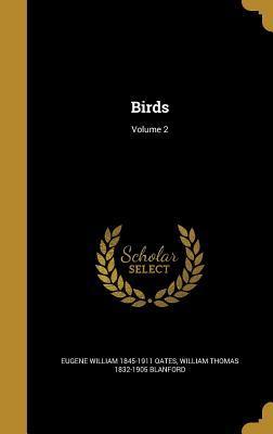 BIRDS V02