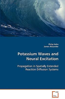 Potassium Waves and Neural Excitation