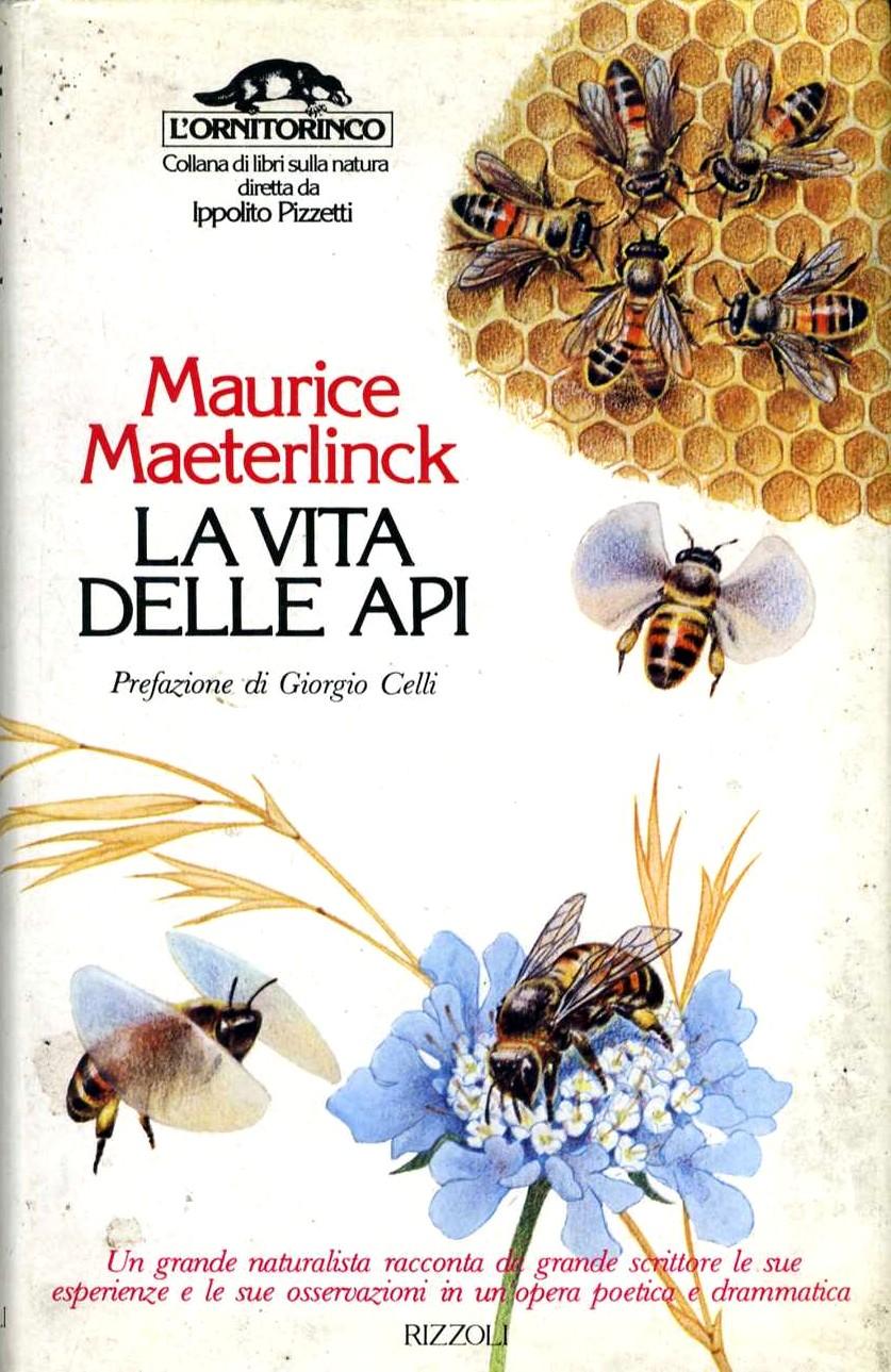 La vita delle api