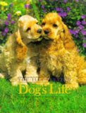 The Illustrated Dog's Life