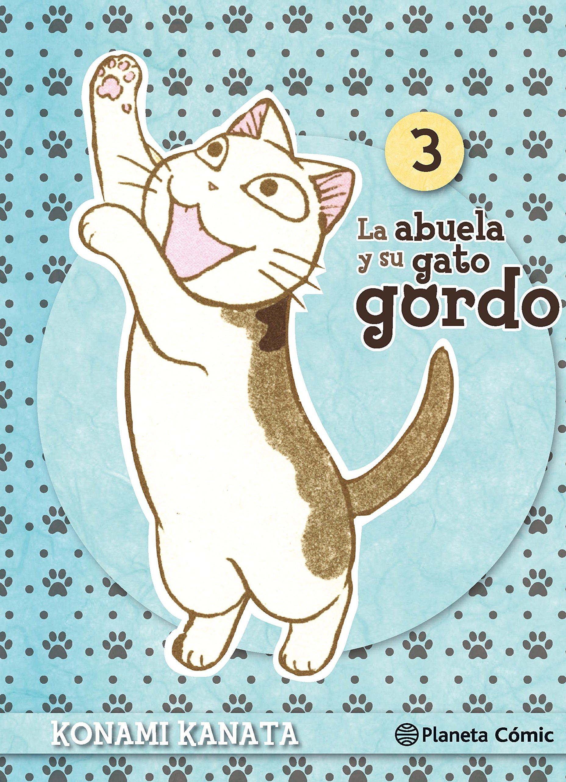 La abuela y su gato gordo #3 (de 8)