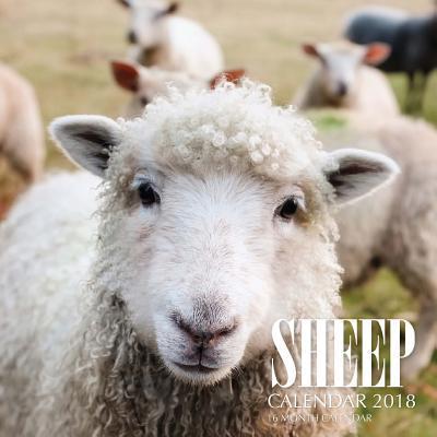 Sheep Calendar 2018