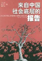 来自中国社会底层的报告