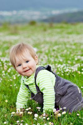 Baby in Field Journal