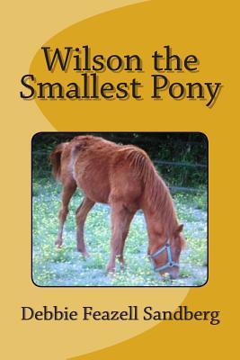 Wilson the Smallest Pony