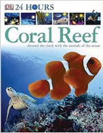 24 Hours Coral Reef