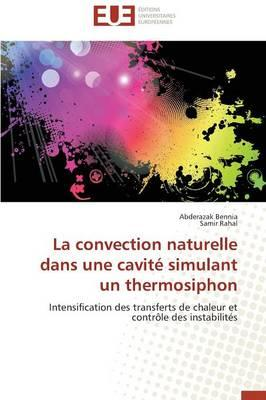 La Convection Naturelle Dans une Cavite Simulant un Thermosiphon