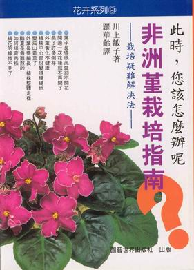 非洲菫栽培指南