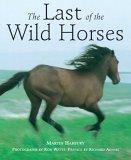 The Last of the Wild Horses