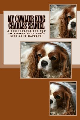 My Cavalier King Charles Spaniel