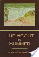 The Scout in Summer