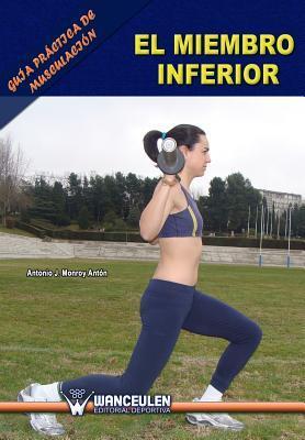 Guia practica de musculacion