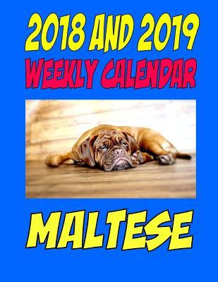 2018 and 2019 Wall Calendar Maltese