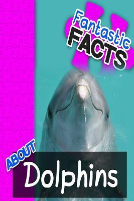 Fantastic Facts About Dolphins