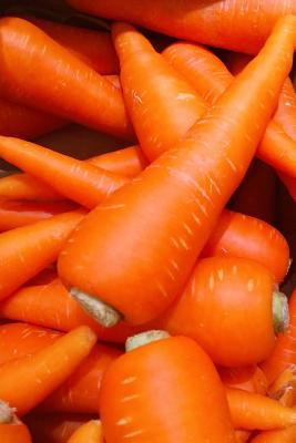 Orange Carrots Vegetable Journal