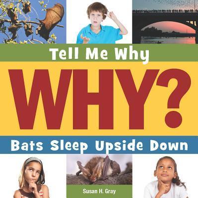 Bats Sleep Upside Down