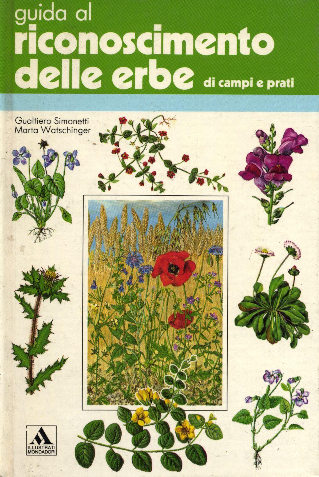 Guida al riconoscimento delle erbe di campi e prati