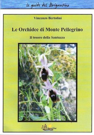 Le orchidee di monte Pellegrino. Il tesoro della Santuzza