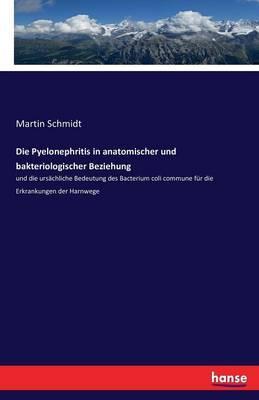 Die Pyelonephritis in anatomischer und bakteriologischer Beziehung