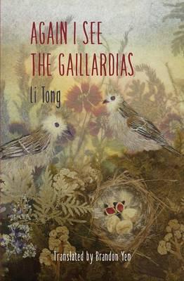 Again I See the Gaillardias