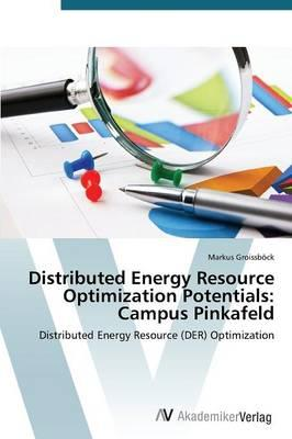 Distributed Energy Resource Optimization Potentials