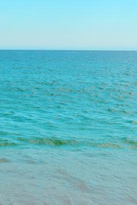 Mexican Ocean