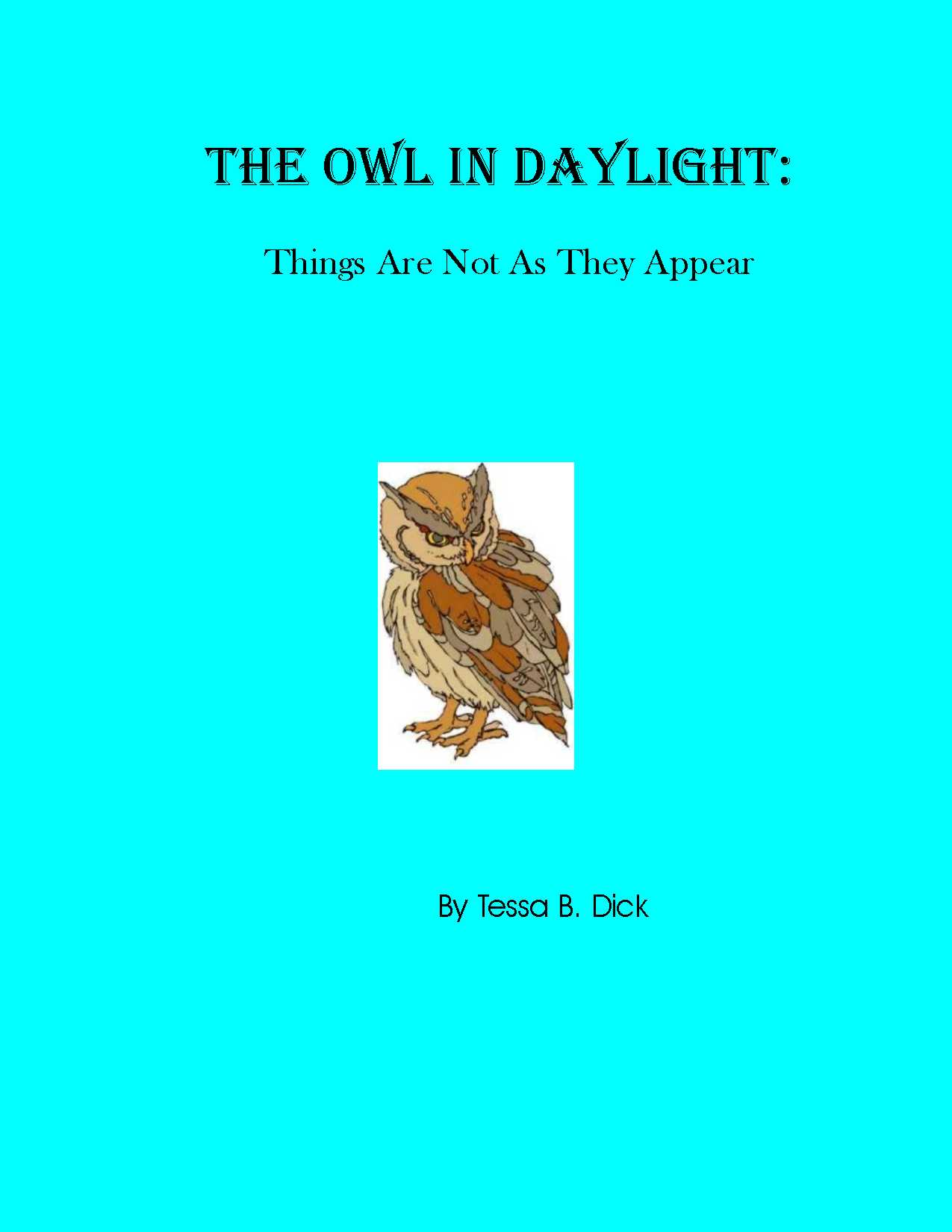 The Owl In Daylight