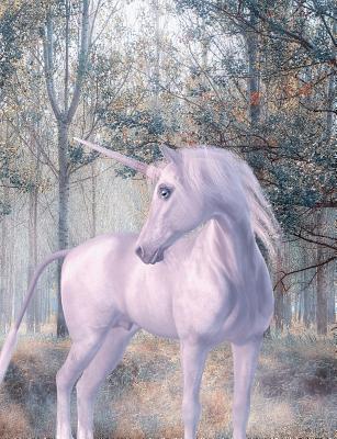 Unicorn Journal, Wide Ruled