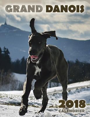 Grand Danois 2018 Ca...