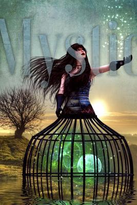 A Mystic Moon Fantas...
