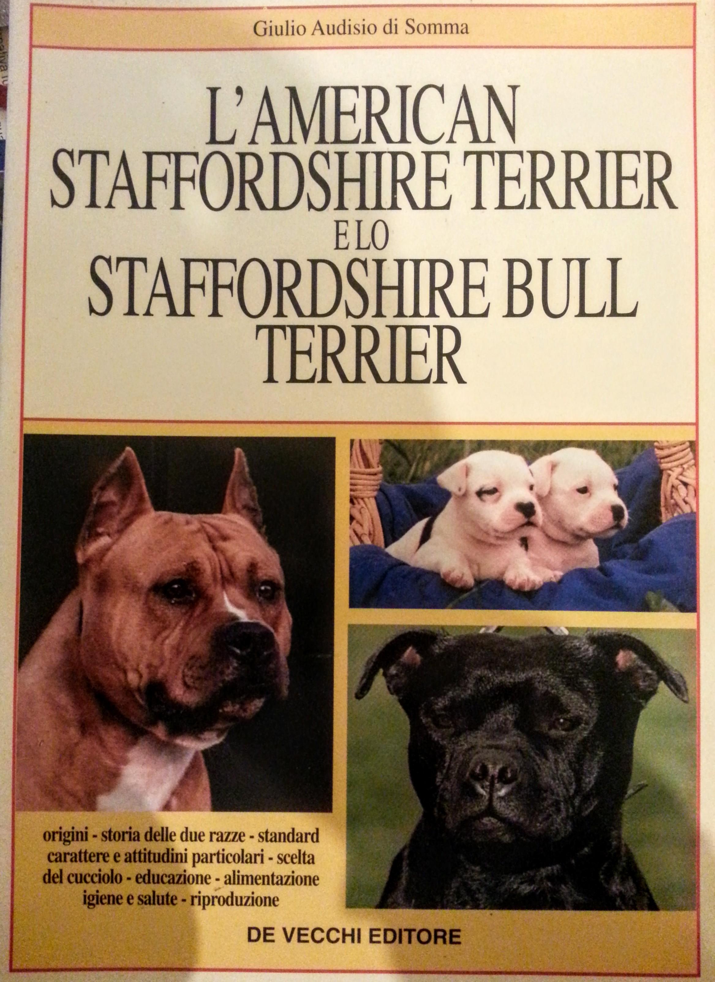 L' american staffordshire terrier e lo staffordshire bull terrier