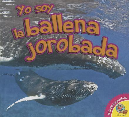 La ballena jorobada / Humpback Whale
