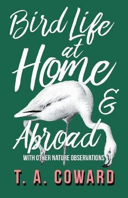 Bird Life at Home and Abroad - With Other Nature Observations