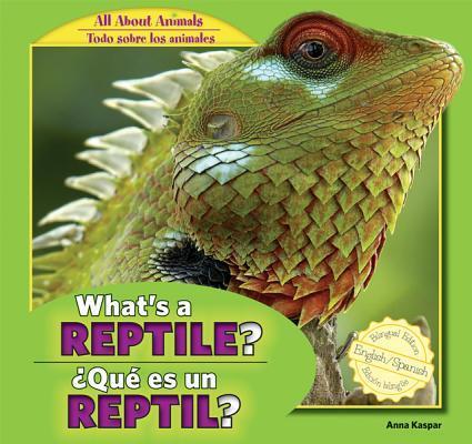 What's a Reptile? / Que Es Un Reptil?