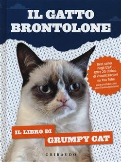 Il gatto brontolone