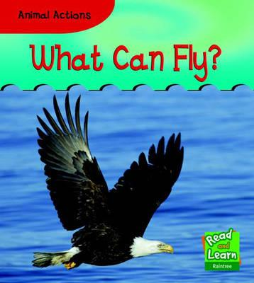What Can Fly? (Read and Learn
