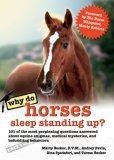 Why Do Horses Sleep ...
