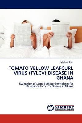 TOMATO YELLOW LEAFCURL VIRUS (TYLCV) DISEASE IN GHANA