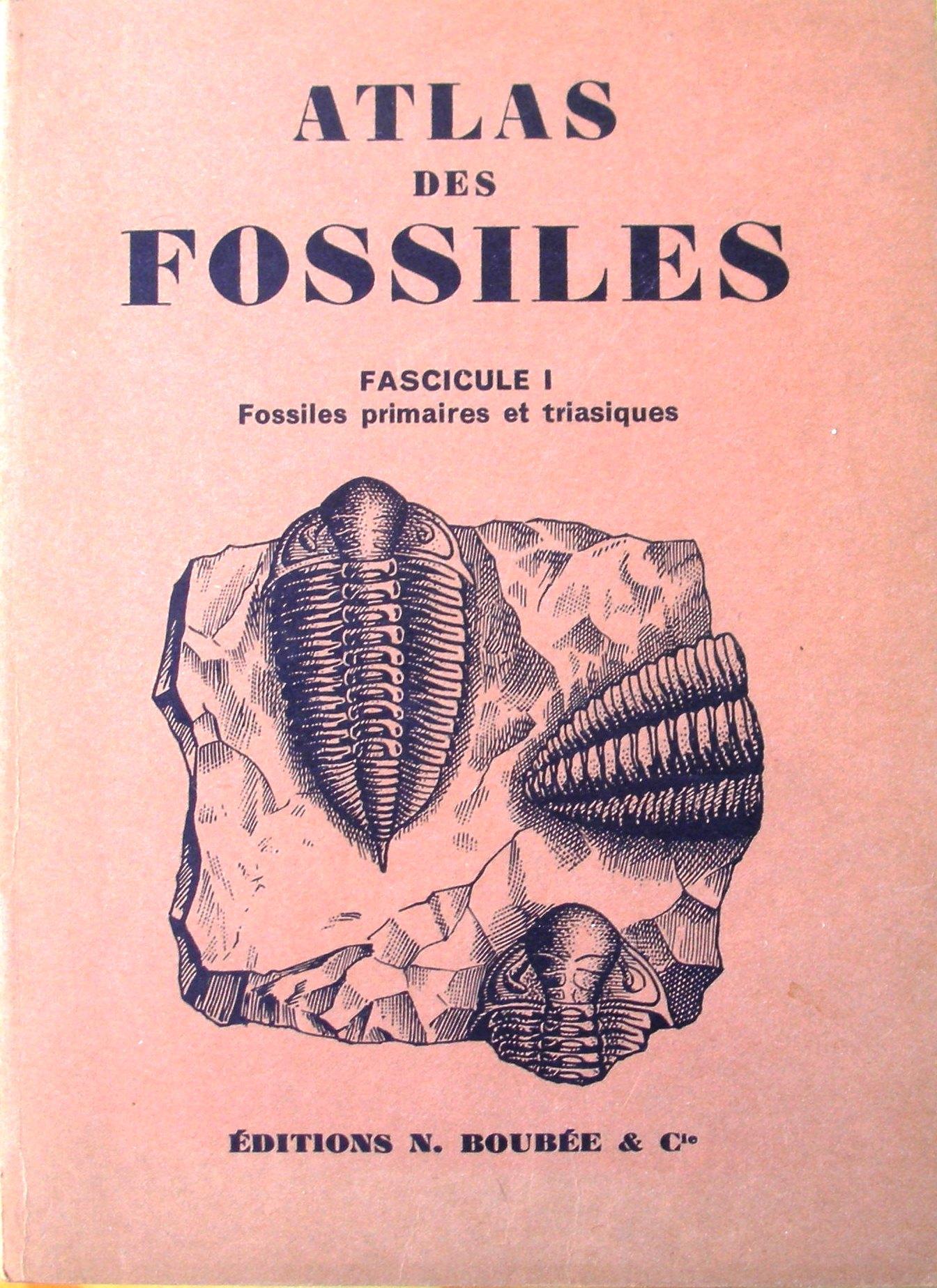 Atlas des fossiles, Fascicule I
