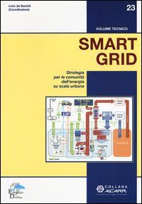 Smart grid. Strategia per le comunità dell'energia su scala urbana
