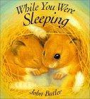 While You Were Sleep...