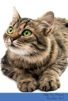 Tabby Cat Presents