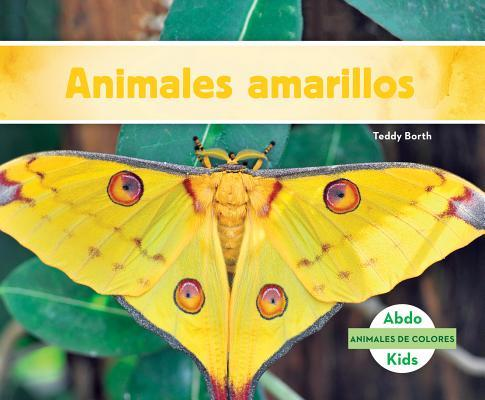 Animales amarillos / Yellow Animals