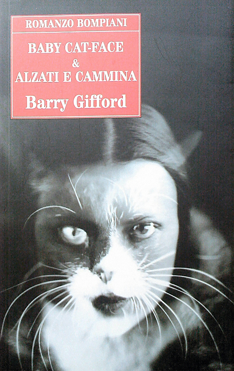 Baby Cat - Face - Alzati e cammina