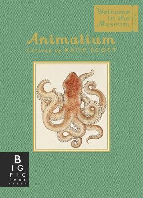 Animalium (Mini Gift Edition)